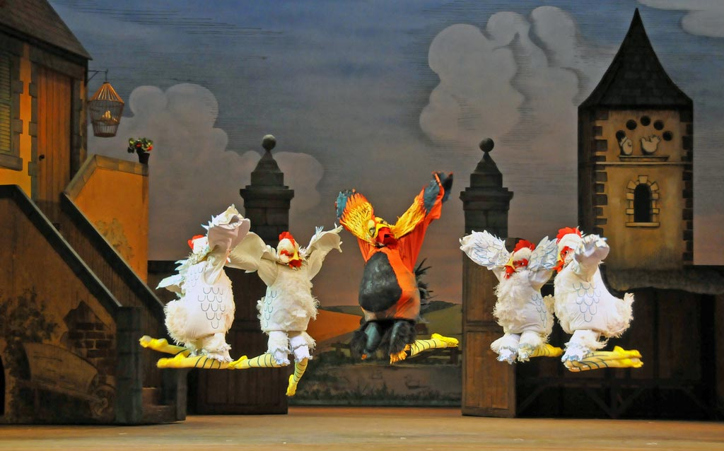 Chickens and Cockrel in La Fille mal gardee. © Dave Morgan. (Click image for larger version)
