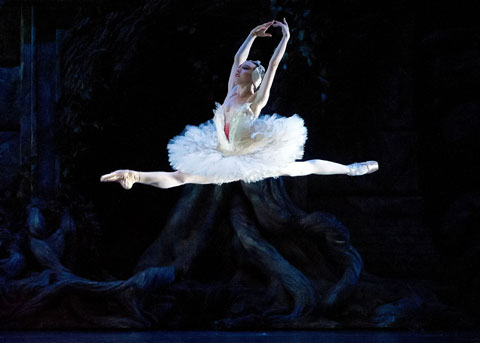 Isabella Boylston in Swan Lake.  © Gene Schiavone. (Click image for larger version)