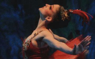 Ashley Bouder in Firebird.© Paul Kolnik. (Click image for larger version)