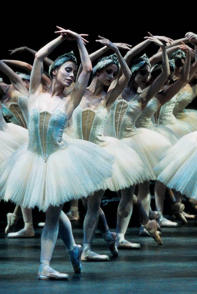 Birmingham Royal Ballet in <I>Swan Lake</I>.<br />© Bill Cooper. (Click image for larger version)