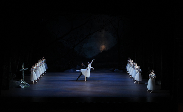 RNZB <I>Giselle</I> with Gillian Murphy and Qi Huan.<br />© Maarten Holl. (Click image for larger version)