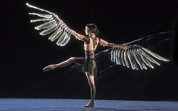 Sarah Lamb in Raven Girl.© Dave Morgan, courtesy the Royal Opera House. (Click image for larger version)
