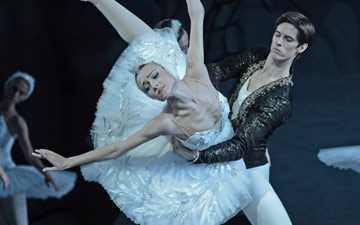 Yulia Stepanova and Xander Parish in Swan Lake.© Dave Morgan. (Click image for larger version)