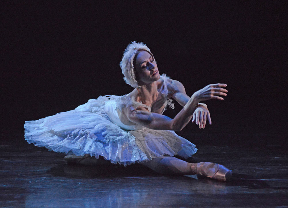 Marianela Nunez in <I>The Dying Swan</I>.<br />© Dave Morgan, courtesy the Royal Opera House. (Click image for larger version)