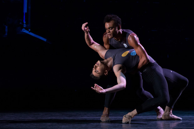 David Prottas (bottom) and Taylor Stanley in <I>All That We See</I>.<br />© Matthew Murphy. (Click image for larger version)