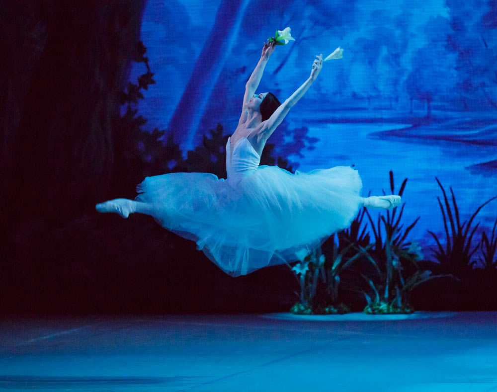 Natalia Osipova in <I>Giselle</I>.<br />© Paul Kolnik. (Click image for larger version)