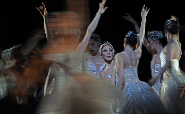 Sarah Lamb in <I>Swan Lake</I>.<br />© Dave Morgan, courtesy the Royal Opera House. (Click image for larger version)
