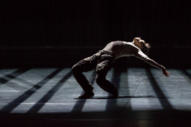 James Wilton Dance Company in <I>Last Man Standing</I>.<br />© Werner Kmetitsch. (Click image for larger version)