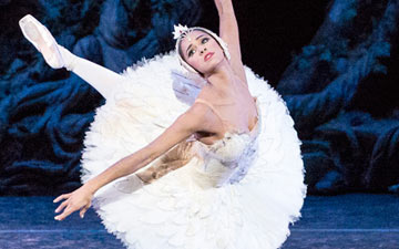 Misty Copeland in Swan Lake.© Darren Thomas, Queensland Performing Arts Centre. (Click image for larger version)