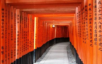 2.5h and kilometers on end of this at Fushimi Inari, Kyoto. Awesome.© Jarkko Lehmus (Click image for larger version)