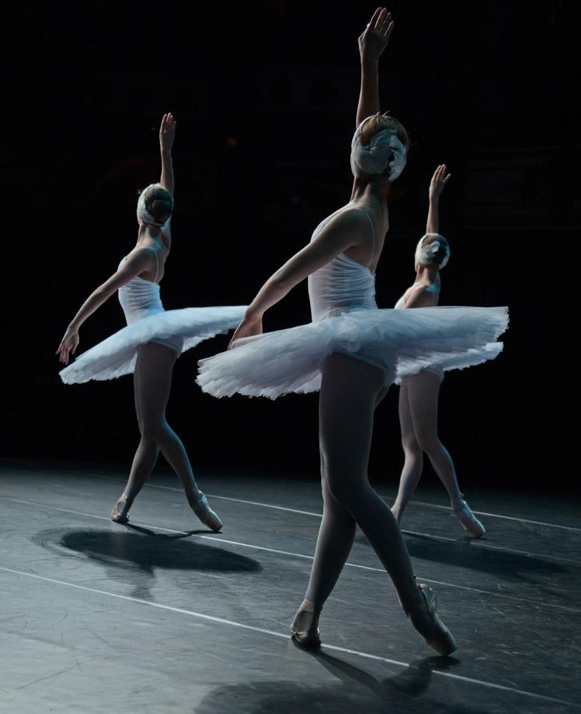 St Peterburg Ballet Theatre in Swan Lake.© Dave Morgan. (Click image for larger version)