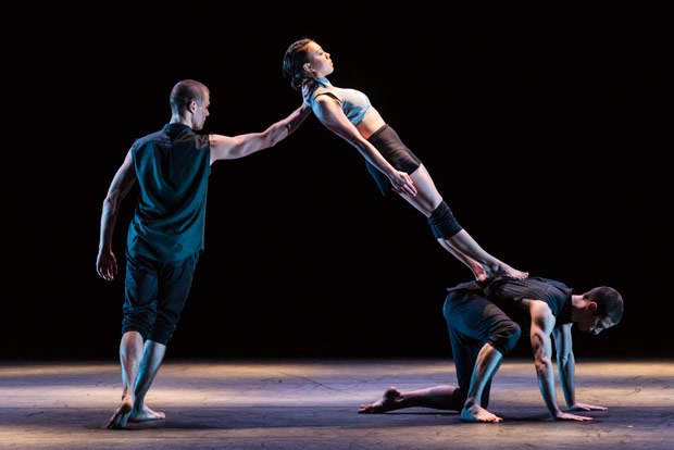 Adam Kirkham, Yu-Hsien Wu and Nathan Young in Broken Fall.© Foteini Christofilopoulou. (Click image for larger version)