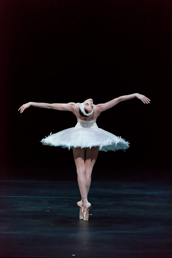 Uliana Lopatkina in The Dying Swan.© Jack Vartoogian. (Click image for larger version)