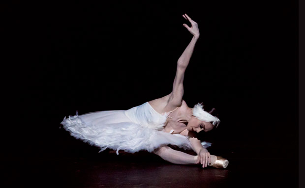 Uliana Lopatkina in <I>The Dying Swan</I>.<br />© Jack Vartoogian. (Click image for larger version)