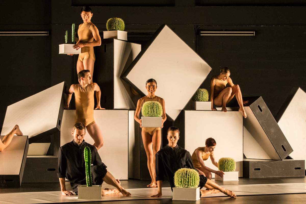 Sydney Dance Company in Cacti.© Peter Greig. (Click image for larger version)