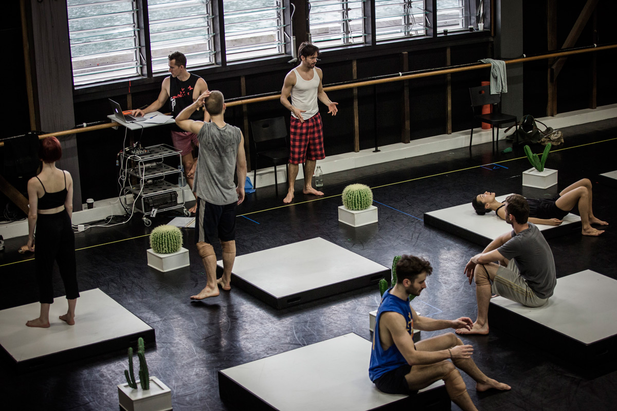 Sydney Dance Company in Cacti rehearsals.© Peter Greig. (Click image for larger version)