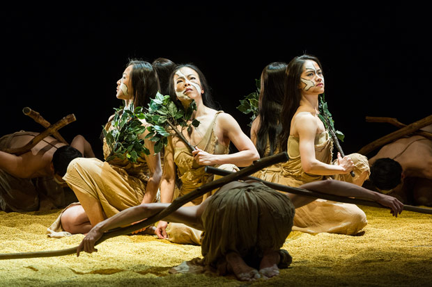 Cloud Gate Dance Theatre of Taiwan in <I>Rite of Tree</I>, part of <I>Songs of the Wanderers</I>.<br />© Foteini Christofilopoulou. (Click image for larger version)