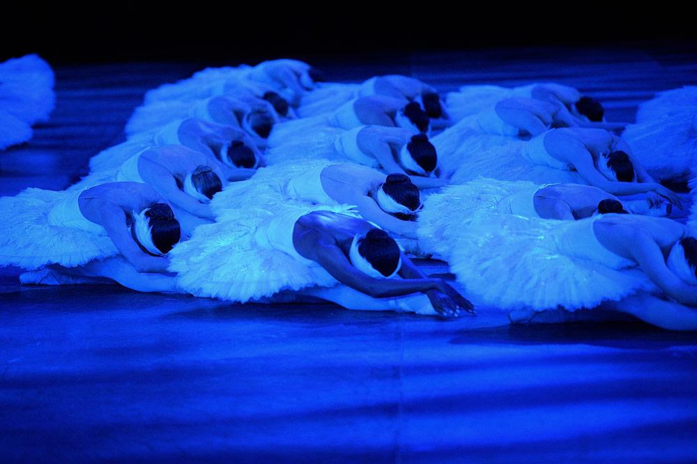 English National Ballet in Swan Lake.© Laurent Liotardo. (Click image for larger version)