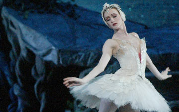 Gillian Murphy in Swan Lake.© Rosalie O'Connor. (Click image for larger version)