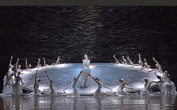 Amber Scott in Graeme Murphy's Swan Lake.© Dave Morgan. (Click image for larger version)