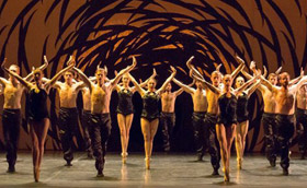 Scottish Ballet in Crystal Pite's <I>Emergence</I>.<br />© Andy Ross. (Click image for larger and full version)
