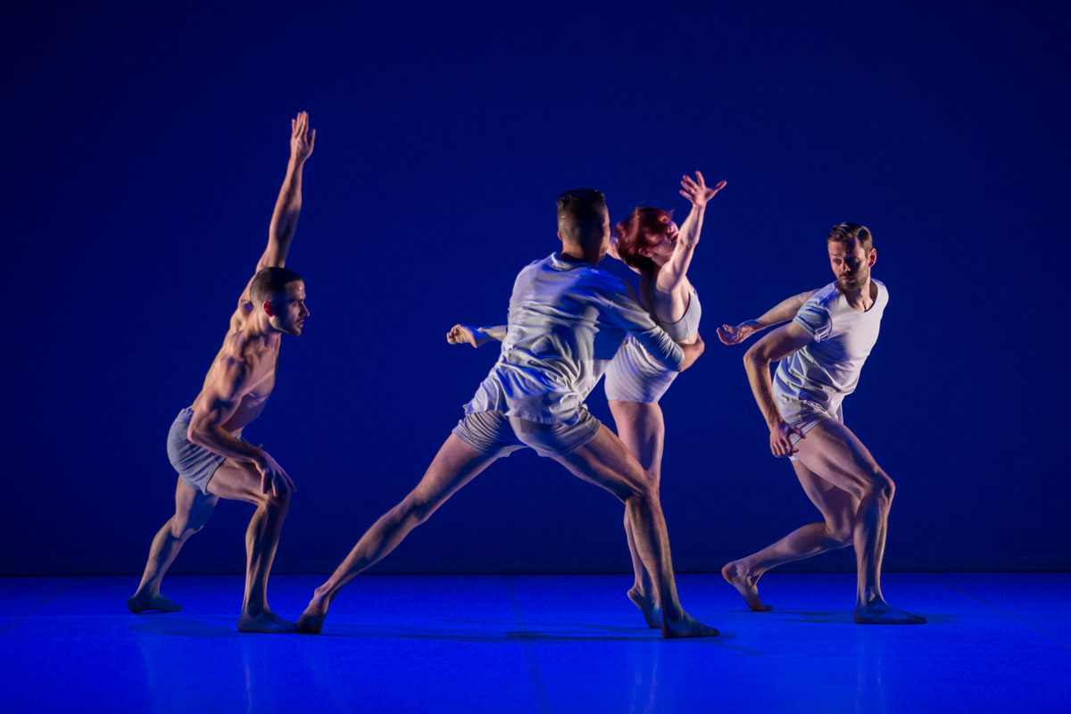 Sydney Dance Company in Anima.© Pedro Greig. (Click image for larger version)