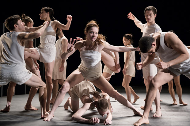 Batsheva Dance Company in <I>Last Work</I>.<br />© Julieta Cervantes. (Click image for larger version)