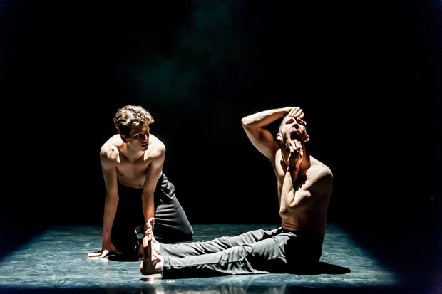 LCDance in <I>Comrades in the Dark</I>.<br />© Lidia Crisafulli. (Click image for larger version)