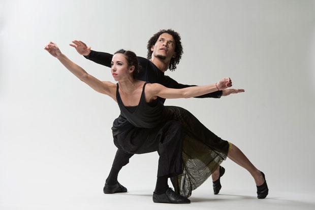 Malpaso Dance Company publicity image.<br />© Nir Arieli. (Click image for larger version)