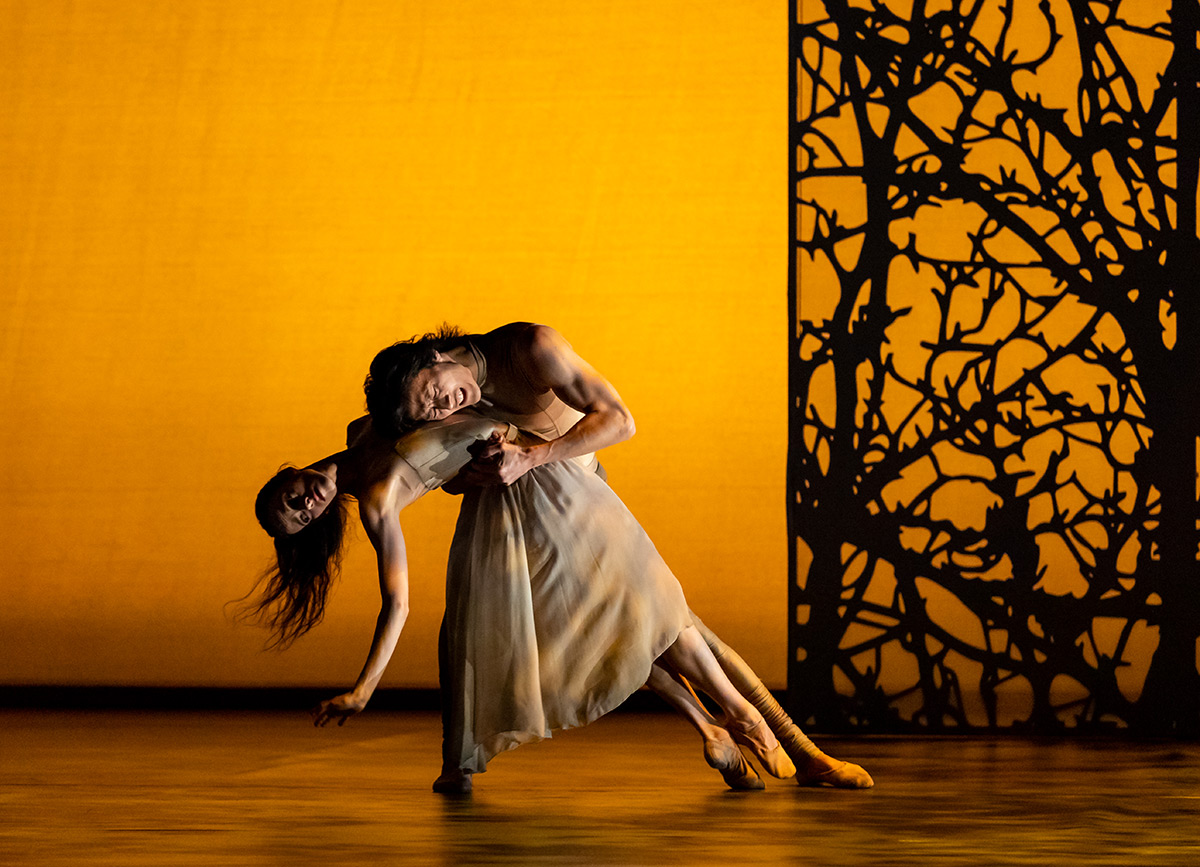 Samara Downs and Yasuo Atsuji in Lachlan Monaghan's Summer, Autumn section of Seasons in Our World.© Andrew Ross. (Click image for larger version)