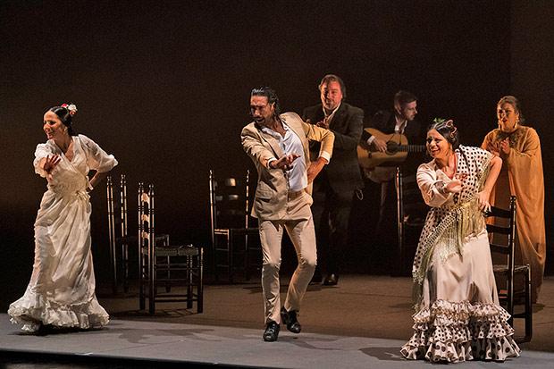 The 2019 <I>Gala Flamenca</I>.<br />© Juan Conca/David Mudarra. (Click image for larger version)