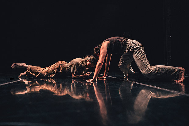 Chelsea Reichert and Alex Carrington in Maurya Kerr's <I>my beloved comet</I>.<br />© Robbie Sweeny. (Click image for larger version)