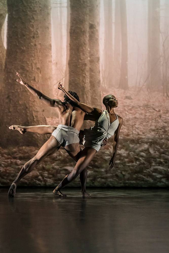 Acosta Danza in Faun.© Johan Persson. (Click image for larger version)
