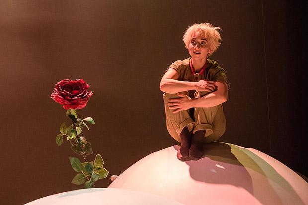 Faith Prendergast in <I>The Little Prince</I>.<br />© Jane Hobson. (Click image for larger version)