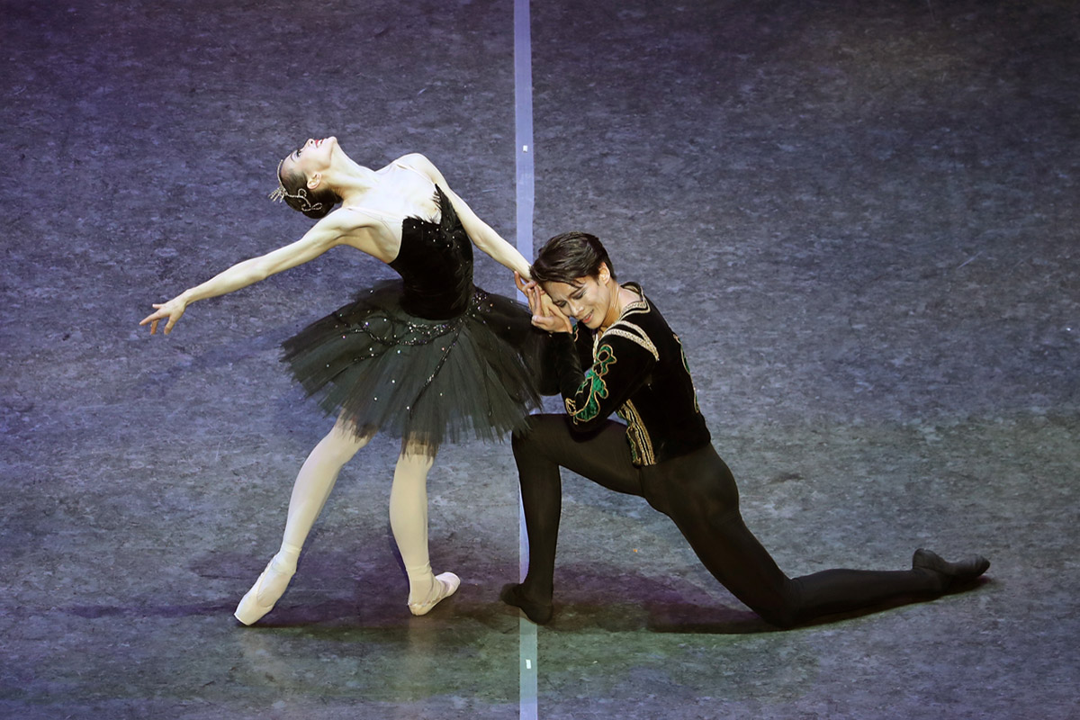 Wu Husheng and Qi Binxue in Swan Lake.© North America Photography Association. (Click image for larger version)