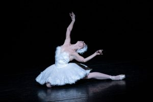 Natalia Osipova in The Dying Swan.© Foteini Christofilopoulou, courtesy the Royal Opera House. (Click image for larger version)